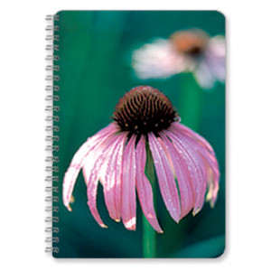 Flowerhead-Notebook